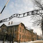 Oświęcim Muzeum Auschwitz