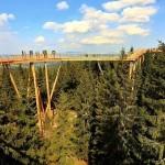 sciezka-w-koronach-drzew-slowacja-tatry-zbierajsie-11-600x600